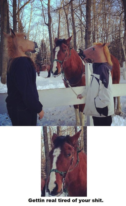 getting-real-tired-horse-mask